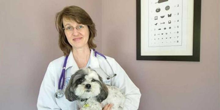 Dr. Katherine Kramer (Foto: Steve Bosch/PNG)