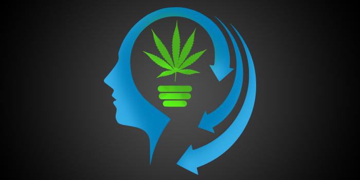 Marihuana a naše paměť