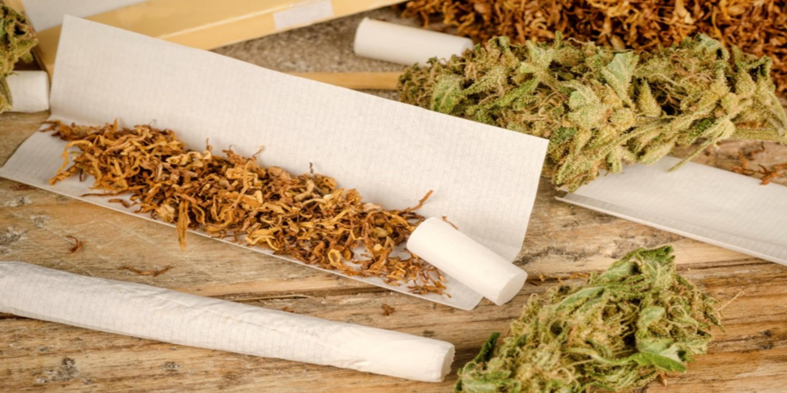 Jaký vliv má marihuana s tabákem na naše tělo??
